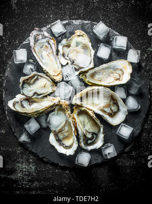 Raw oysters on a stone Board with ice pieces. On dark rustic background