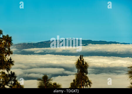 Pine forest of Tenerife, silhouette of La Gomera and Il Hierro islands on background. View from 1900m altitude. Long lens shot. Tenerife, Spain. - Stock Photo