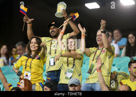 15th June 2019, Arena Fonte Nova, Salvador, Bahia, Brazil; Copa America International Football tournament, Argentina versus Colombia;  Fans of Colombia - Stock Photo