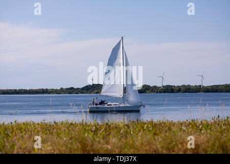 Sailboat for full sail on a river on a sunny day with wind turbines in the background. Copenhagen, Denmark - June 14, 2019.