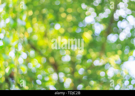 Natural bokeh background - Stock Photo