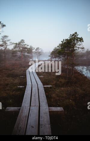 A long narrow wooden bridge passing through trees on a brown terrain - Stock Photo