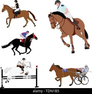 equestrian sports. dressage,jump show,gallop,harness racing - vector - Stock Photo