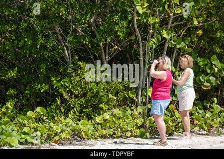 Sanibel Island Florida J.N. Ding Darling National Wildlife Refuge environmental conservation education Wildlife Drive trail birdwatching binoculars wo - Stock Photo