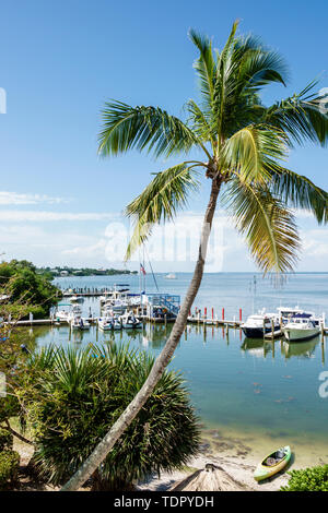 Captiva Island Florida 'Tween Waters Inn Island Resort & Spa hotel marina docks boats waterfront palm tree kayak Pine Island Sound - Stock Photo