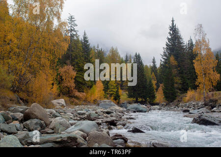 mountain creek in the Valley of Cogne in autumn, Italy, Aosta, Gran Paradiso National Park - Stock Photo