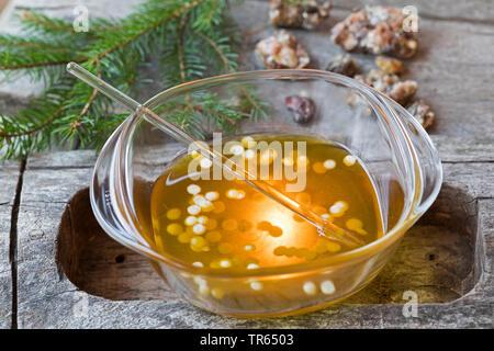 Harzsalbe: Fichtenharz wird zusammen mit Olivenoel und Bienenwachs zu einer Heilsalbe verarbeitet und auf Stoevchen mit Teelicht erhitzt | healing oin - Stock Photo