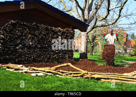 man working in a garden, wood stack, mount of bark mulch and barrow, Germany, North Rhine-Westphalia - Stock Photo