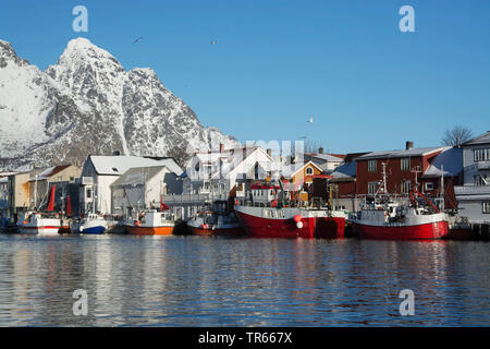 fishing trawlers in the port of Henningsvaer on the Lofoten in winter, Norway, Lofoten Islands, Henningsvaer - Stock Photo