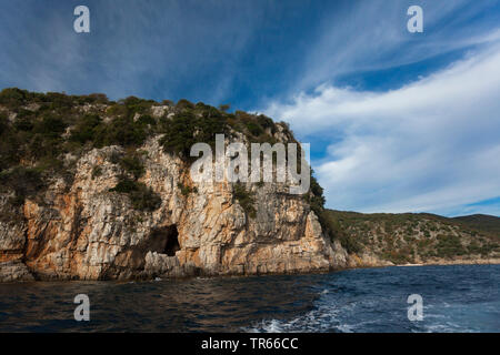 griffon vulture (Gyps fulvus), city of Beli, breeding rocks of vultures near sea, Tramontana range, Croatia, Cres - Stock Photo