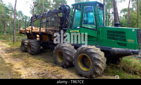 Scotch pine, Scots pine (Pinus sylvestris), Harvester in a pine wood, timber harvesting, Netherlands - Stock Photo