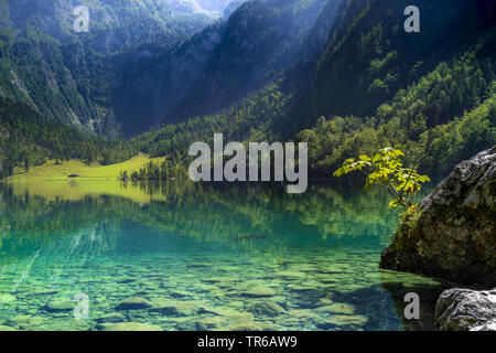 Obersee Lake in the Berchtesgaden National Park, Germany, Bavaria, Berchtesgaden National Park - Stock Photo