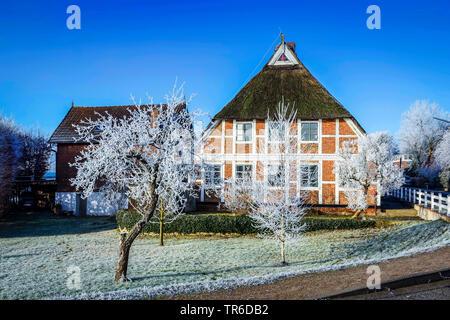 historical timbered house in Kirchwerder in winter, Germany, Hamburg, Vier- und Marschlande, Hamburg - Stock Photo