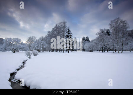 little creek in a snow-covered meadow, Germany, North Rhine-Westphalia, Bergisches Land - Stock Photo