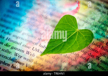 heart-shaped leaf on a colourful bookpage, romance, Germany - Stock Photo
