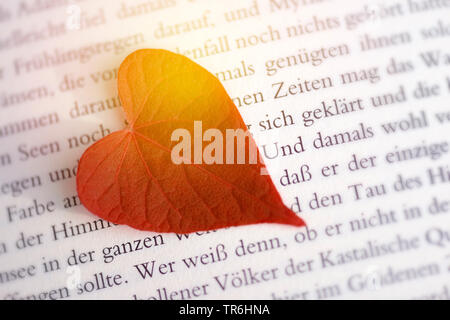 heart-shaped leaf on a bookpage, romance, Germany - Stock Photo