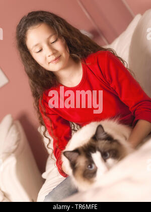 domestic cat, house cat (Felis silvestris f. catus), young girl on a sofa playing with her cat, Germany - Stock Photo
