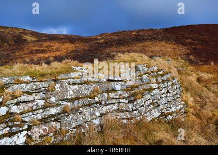Megalithanlage Cairn o' Get, Grossbritannien, Schottland, Caithness, Ulbster | Cairn o' Get, United Kingdom, Scotland, Caithness, Ulbster | BLWS489661 - Stock Photo