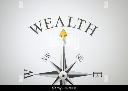 3D computer graphic, compass in white color lettering WEALTH