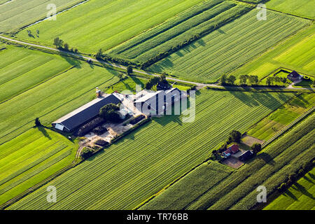 field landscape with farm house at the North Sea, aerial photo, Netherlands - Stock Photo