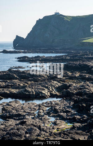 View of the Horses Head rock at Prawle Point, East Prawle, Devon - Stock Photo