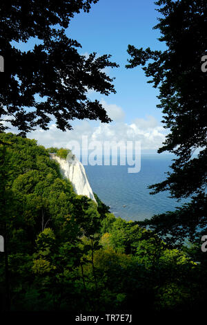 The classic view of Konigsstuhl dramatic white chalk cliffs of Jasmund National Park on the German Rugen island, in the Baltic Sea Germany. - Stock Photo