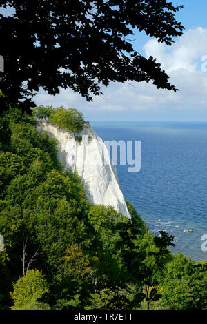 The Konigsstuhl dramatic white chalk cliffs of Jasmund National Park on the German Rugen island, in the Baltic Sea Germany. - Stock Photo