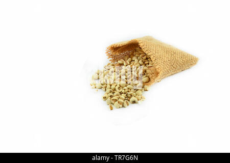 Job's tears coix lachryma jobi grain seeds in sack isolated on white background - Stock Photo