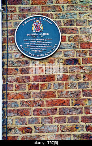 Plaque on Wall of No 5 Ravensworth Terrace, residence of Joshua Alder, Newcastle upon Tyne, England as featured in tv programme a house in time - Stock Photo