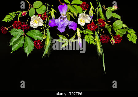 A group of bright flowers with small roses, purple iris with buds, Alstroemeria, wild grape leaves and various field herbs on a black background - Stock Photo