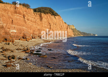 UK,Devon,Sidmouth Seafront and Coastline looking towards Salcombe Hill - Stock Photo