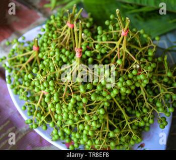 Fresh sichuan pepper fruits for sale in local market / Zanthoxylum piperitum green sichuan pepper thai asia - Stock Photo