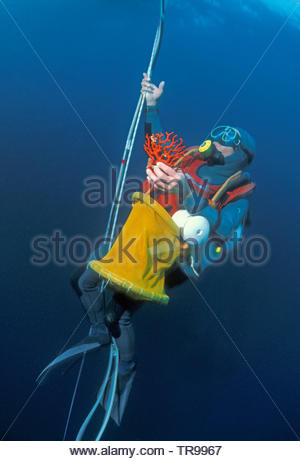 Coral diver with Red Corals (Corallium rubrum), at anchor robe, Marseillie, South France, France - Stock Photo