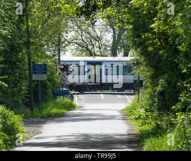 Train passing over level crossing through trees Milton Cambridge 2019 - Stock Photo