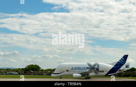 Airbus A330-743L Beluga XL2, F-WBXS  moving down runway after landing at Hawarden Airport - Stock Photo