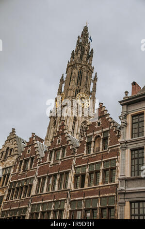 Gothic bell tower with golden clock and typical buildings in Antwerp. Multicultural city with one of the biggest European port in Belgium. - Stock Photo