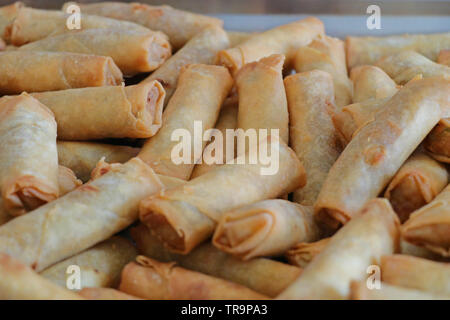 Chinese style vegetable spring roll - Stock Photo