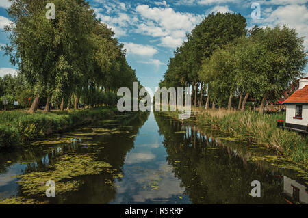 Bushes and grove along canal with sky reflected on water at Damme. A small and charming old village in Belgium countryside. - Stock Photo