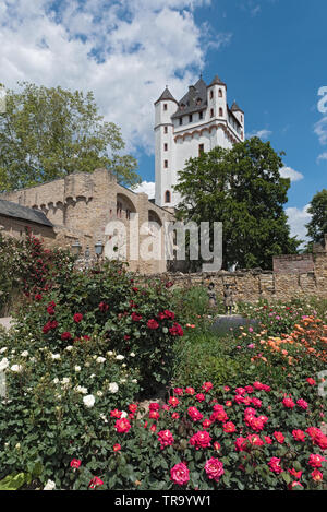 the tower of the electoral castle in eltville on the rhine germany - Stock Photo