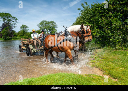 River Avon Fordingbridge, New Forest. Hampshire, UK, 1st June 2019. As part of culture week in the tow, local businessman Davide Shering deploys his Comtois heavy horses to create a scene similar to that in the Hay Wain, a painting by John Constable in 1821. Locals were invited to take part in a spot the difference competition with the original. Credit: Paul Biggins/Alamy Live News - Stock Photo