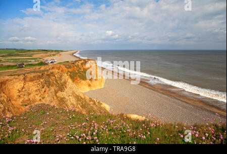 A view westwards along the cliffs to the shingle beach on the North Norfolk coast at Weybourne, Norfolk, England, United Kingdom, Europe. - Stock Photo