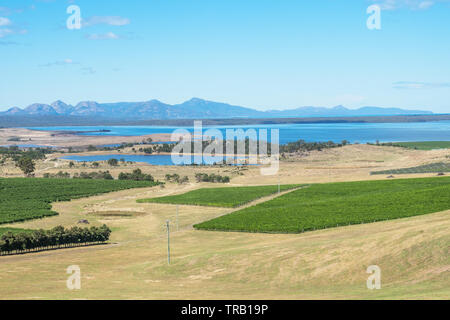 Moulting Lagoon Game Reserve on the East Coast of Tasmania, seen here with vineyards in the foreground and Freycinet National Park in the background, - Stock Photo