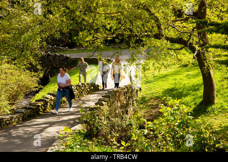 Northern Ireland, Co Down, Bryansford, Tollymore Forest Park, family walking through landscaped parkland - Stock Photo