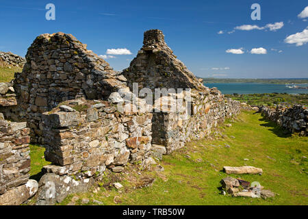 Ireland, Co Louth, Cooley Peninsula, Rooskey, ruins of house in abandoned pre-famine village - Stock Photo