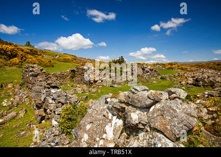 Ireland, Co Louth, Cooley Peninsula, Rooskey, ruins of house wall in abandoned pre-famine village - Stock Photo