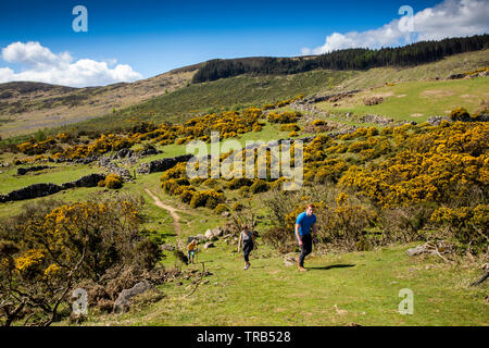 Ireland, Co Louth, Cooley Peninsula, Rooskey, visitors walking up steep slope in abandoned pre-famine hilltop village above Carlingford Lough