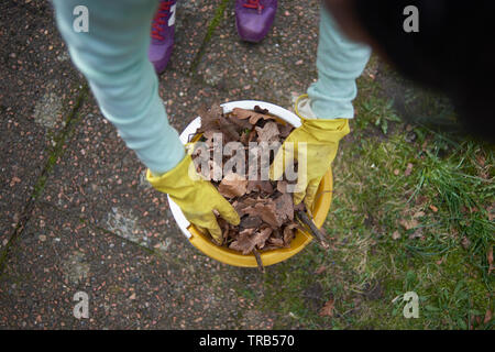 POV of a woman putting dead leaves in a bucket during spring cleaning session in the garden. She is wearing yellow rubber gloves - Stock Photo
