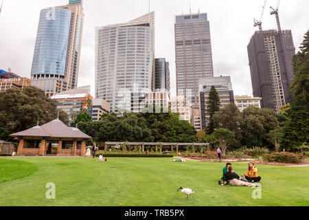 Royal Botanic Gardens city centre scene with people having picnics and enjoying company of White Ibis birds. - Stock Photo