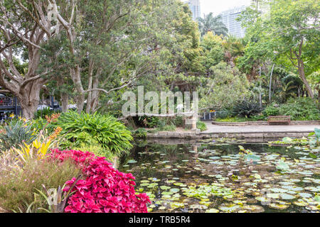 Exotic park scene with small lake and flame red foliage of coleus shrub in foreground. - Stock Photo