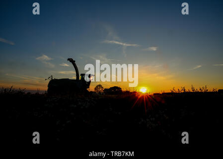 Silage time in the valley - Stock Photo